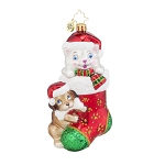 RADKO 1017944 PIP AND PAW - ANIMAL RELATED CHARITY - DOG & CAT IN STOCKING ORNAMENT - NEW 2015 (15-1)